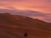 Sahara Dunes at Dusk